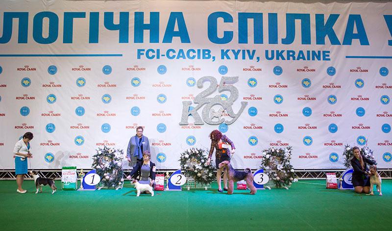 Группа FCI III - BIS CACIB «Киевская Русь - 2015» (Украина), 5 декабря 2015 года