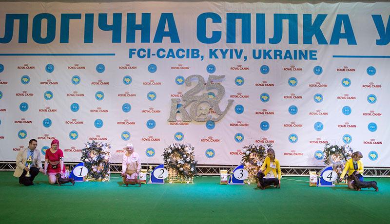 Группа FCI IV - BIS CACIB «Киевская Русь - 2015» (Украина), 5 декабря 2015 года