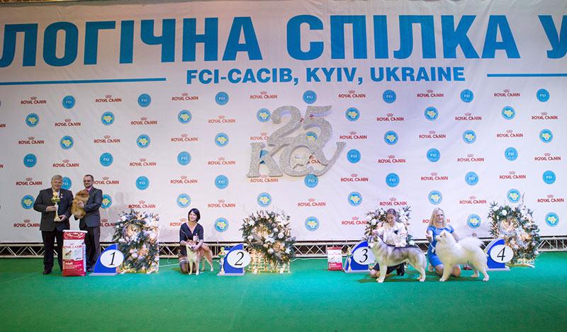 Группа FCI V - BIS CACIB «Киевская Русь - 2015» (Украина), 5 декабря 2015 года