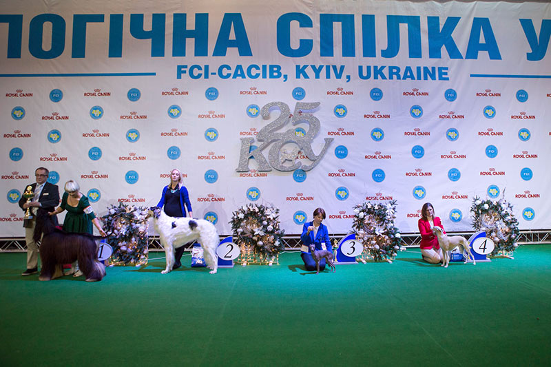 Группа FCI X - BIS CACIB «Киевская Русь - 2015» (Украина), 5 декабря 2015 года