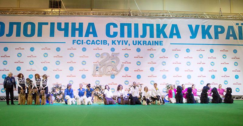 Лучший заводчик - BIS CACIB «Киевская Русь - 2015» (Украина), 5 декабря 2015 года