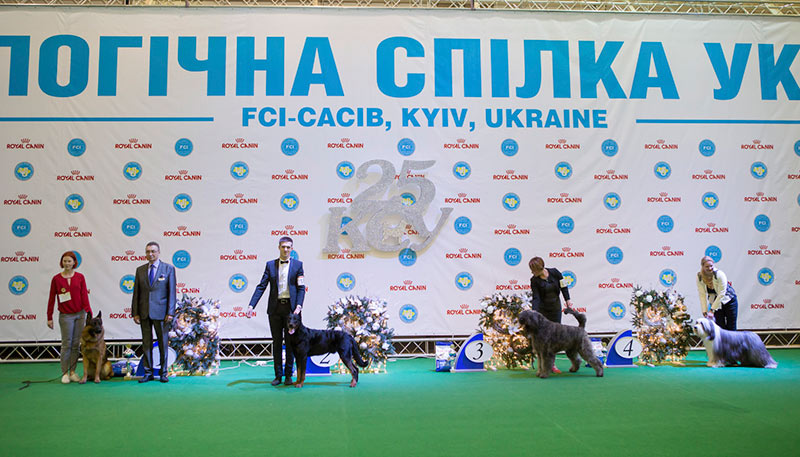 FCI group I - BIS CACIB «Crystal Cup of Ukraine 2015», 6 December 2015