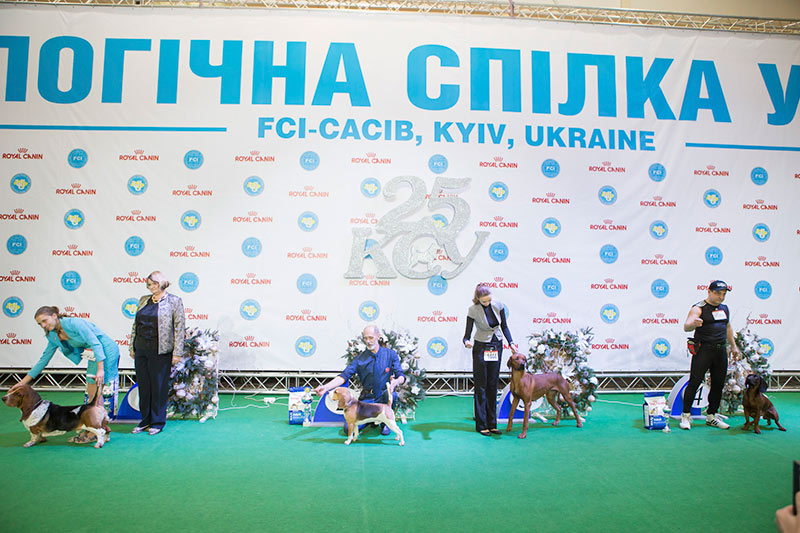 FCI group VI - BIS CACIB «Crystal Cup of Ukraine 2015», 6 December 2015