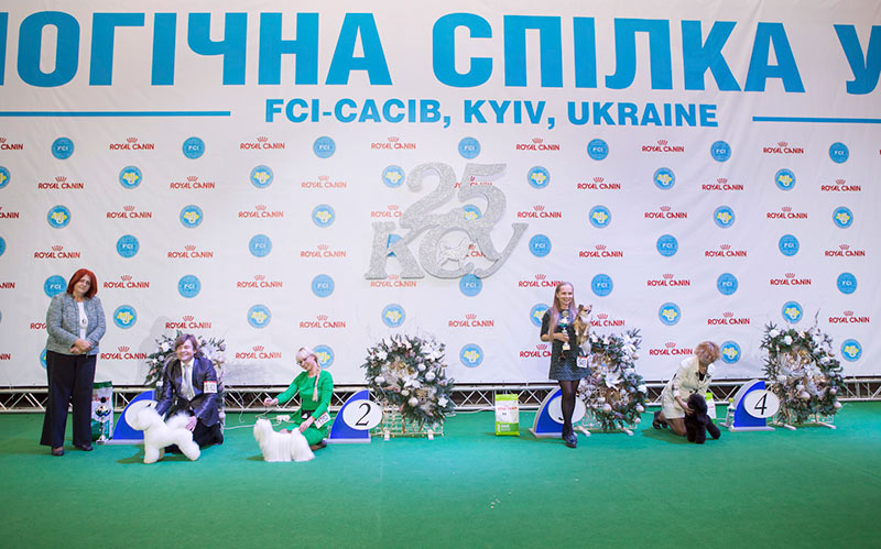 FCI group IX - BIS CACIB «Crystal Cup of Ukraine 2015», 6 December 2015