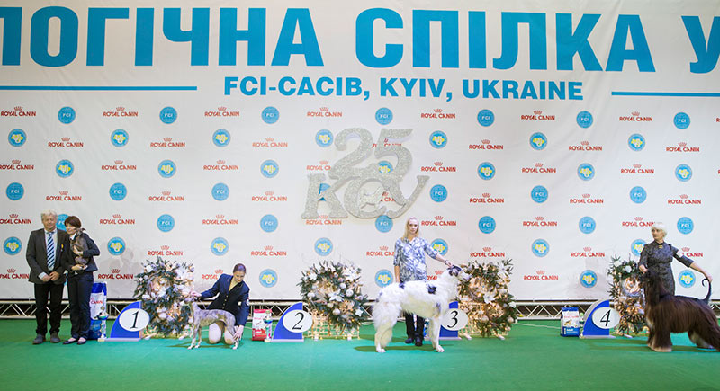 FCI group X - BIS CACIB «Crystal Cup of Ukraine 2015», 6 December 2015