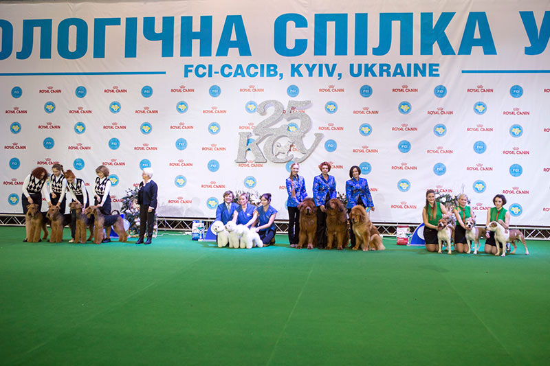 Best Breeders' Group - BIS CACIB «Crystal Cup of Ukraine 2015», 6 December 2015