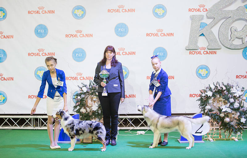 Junior Handler BIS - BIS CACIB «Crystal Cup of Ukraine 2015», 6 December 2015