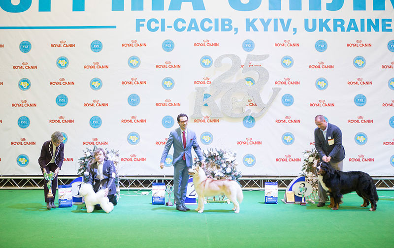 Parade of Champions - BIS CACIB «Crystal Cup of Ukraine 2015», 6 December 2015