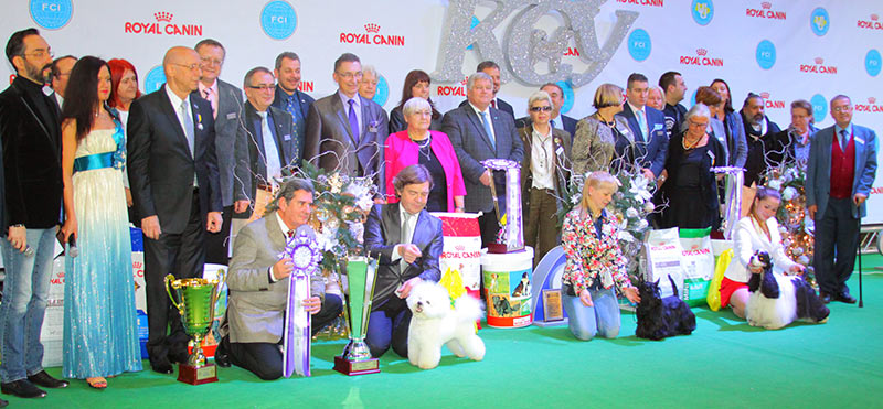 Best in Show (BIS) - BIS CACIB «Crystal Cup of Ukraine 2015», 6 December 2015