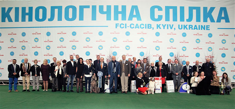 Best in Show FCI-CACIB «Kievan Rus 2016» (BIS, Saturday, 3 December 2016) - BIS 2xCACIB Kiev (Ukraine), 3-4 December 2016